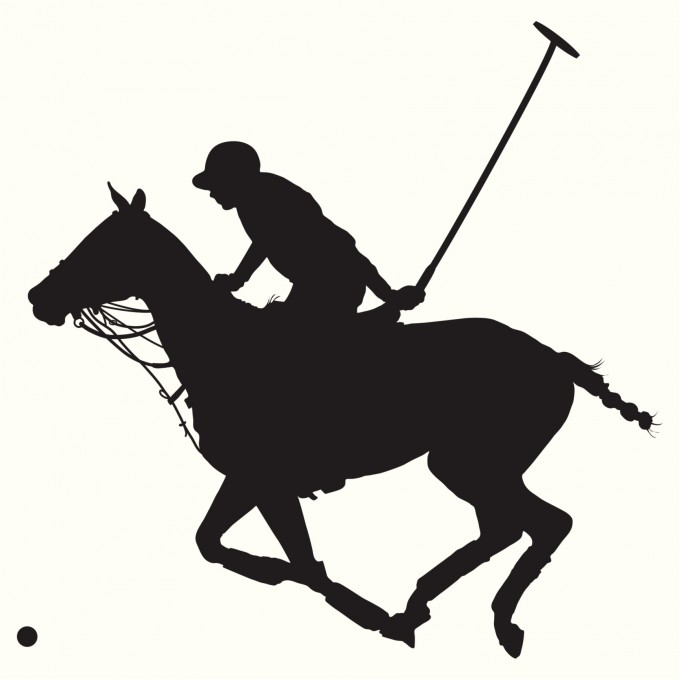 Hästpolons historia