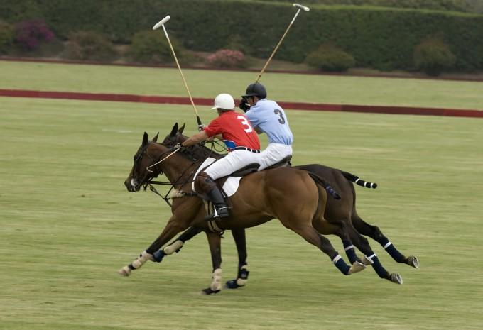 Att träna inför hästpolo